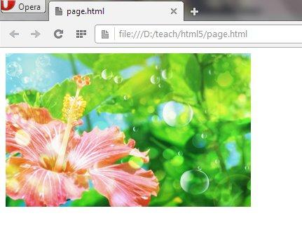 html изображения