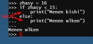 Python if else